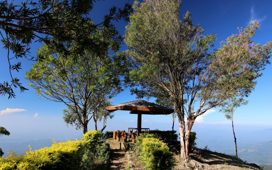 5 best hiking trails in Sri Lanka